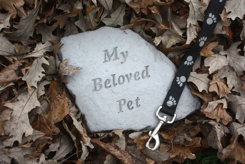 How Much Does Pet Cremation Cost?