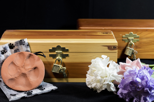 Do Pets Get Cremated Individually?